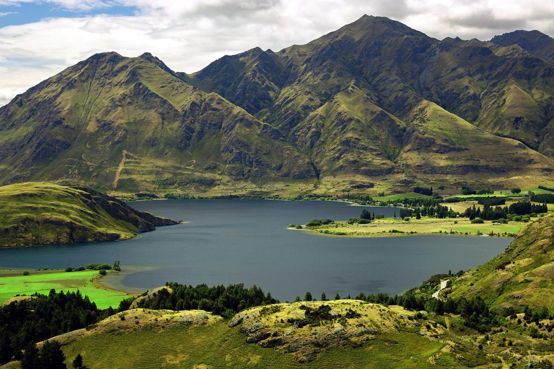 20% новозеландских компаний сталкивались с коррупцией