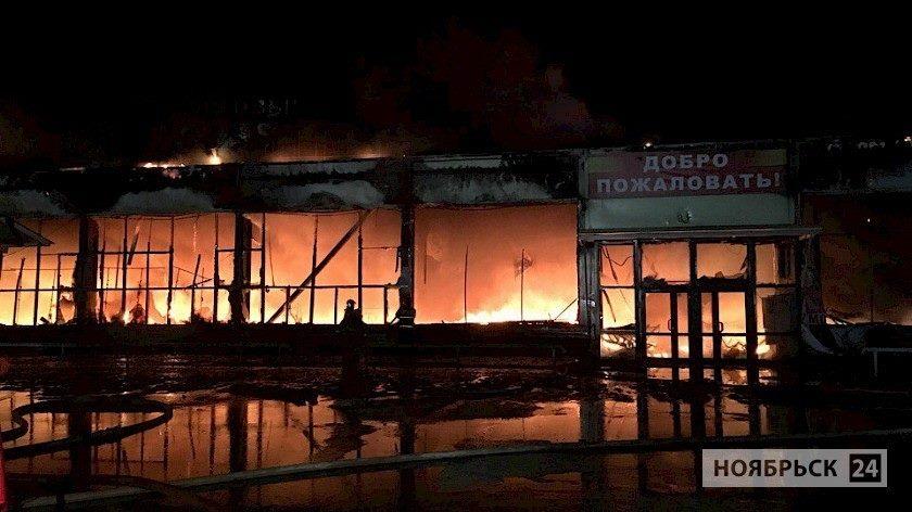 Пожары в ТЦ на Ямале, Зимняя вишня, коррупция, противодействие коррупции