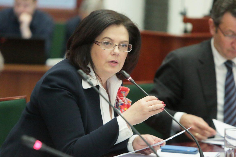 Вице-президент ТПП РФ Елена Дыбова